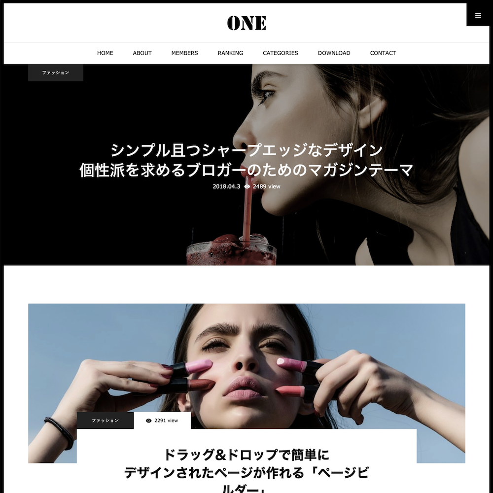 WordPress ONE